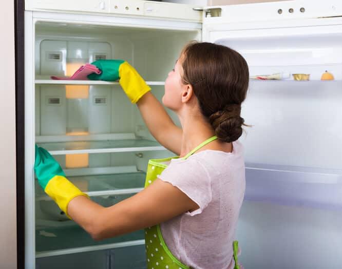 Refrigerator cleaning - ניקוי מקרר