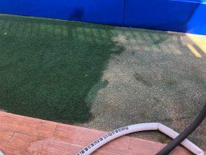 ניקוי דשא סינטטי - חברת WeClean