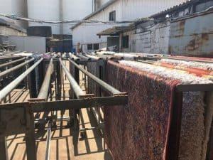 ניקוי שטיחים בהרצליה - WeClean