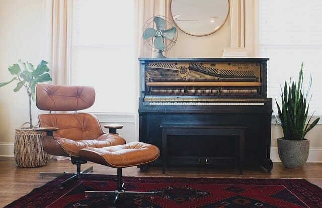 שטיחים, עציץ, כיסא