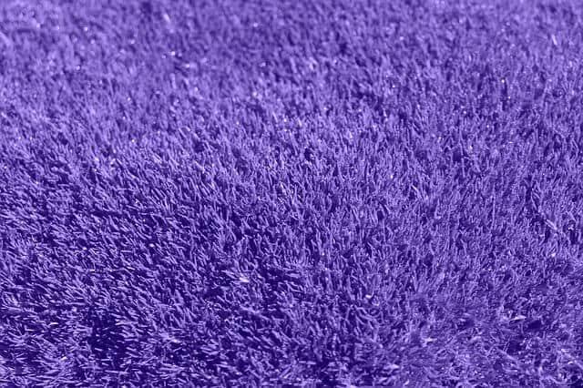 שטיח כחול/סגול