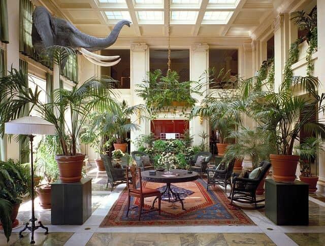 שטיחים, בית, חצר
