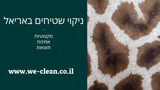 ניקוי שטיחים באריאל - חברת וויקלין