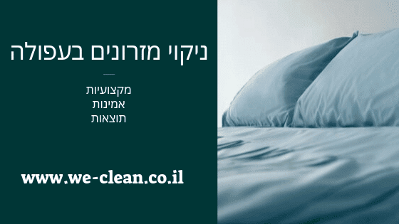 ניקוי מזרונים בעפולה והסביבה - חברת WeClean
