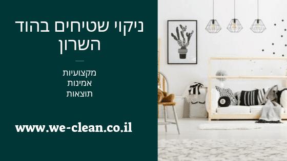 ניקוי שטיחים בהוד השרון - WeClean