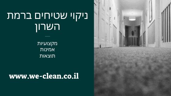 ניקוי שטיחים ברמת השרון - WeClean