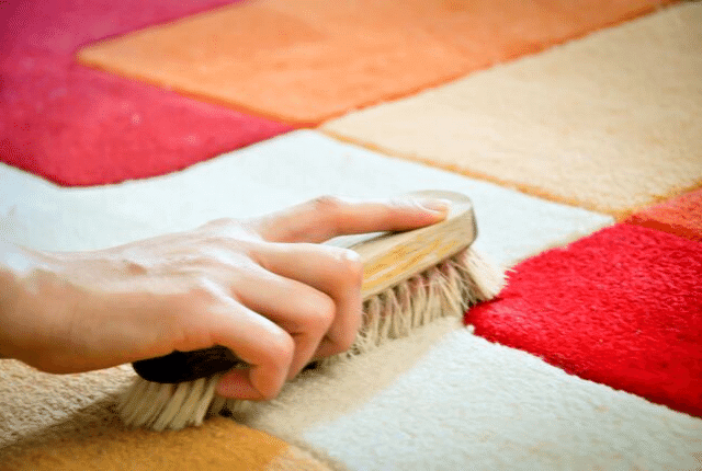 ניקוי שטיח צבעוני, מברשת