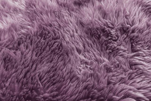 שטיח פרווה, סיבי שטיחים בצבע סגול